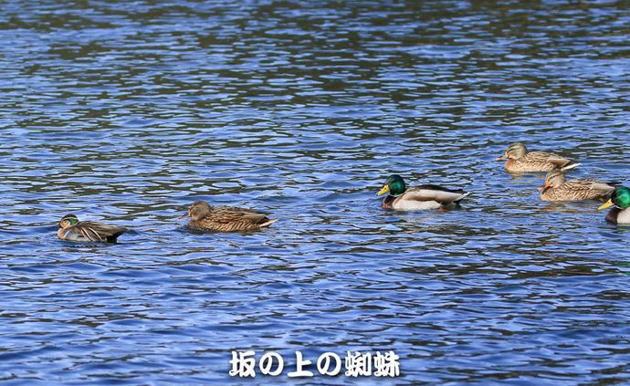 01-TACK9178-LR.jpg