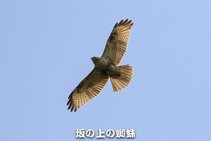 01-TACK9862-LR-2.jpg