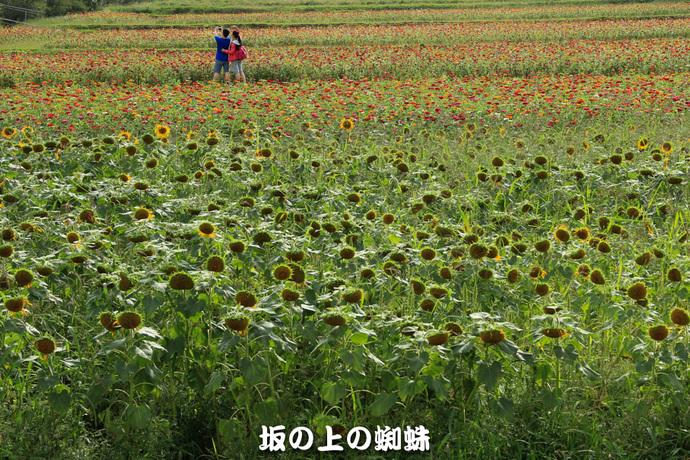 02-IMG_4691-LR.jpg