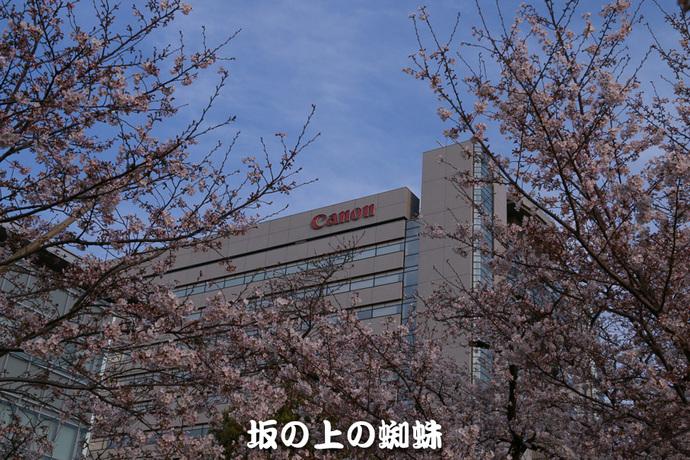 02-IMG_7267-2-LR.jpg