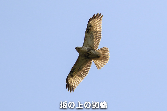 02-TACK9865-LR-2.jpg