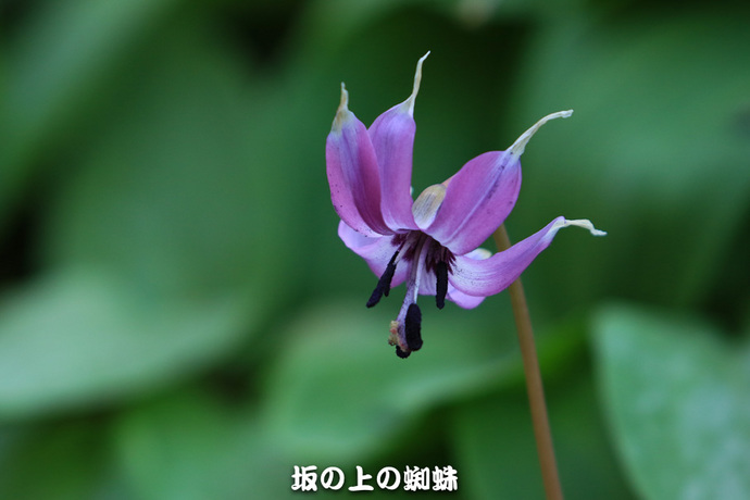 03-EO7D7198-2LR-1.jpg