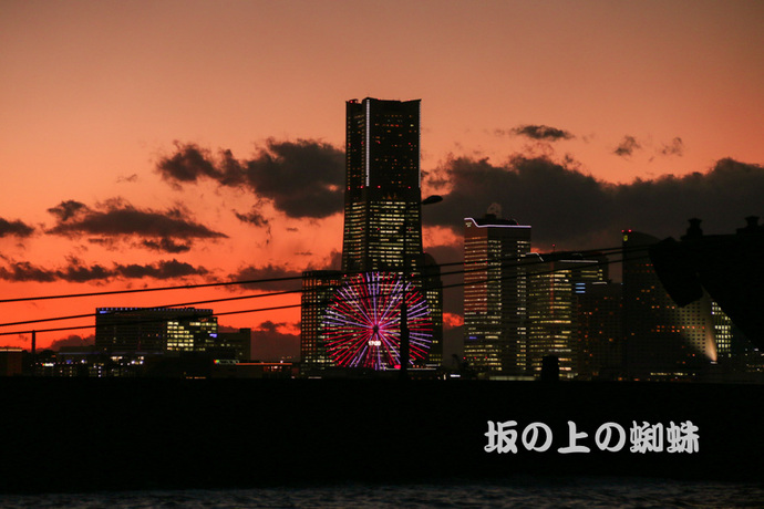 03-IMG_9350LR-1.jpg
