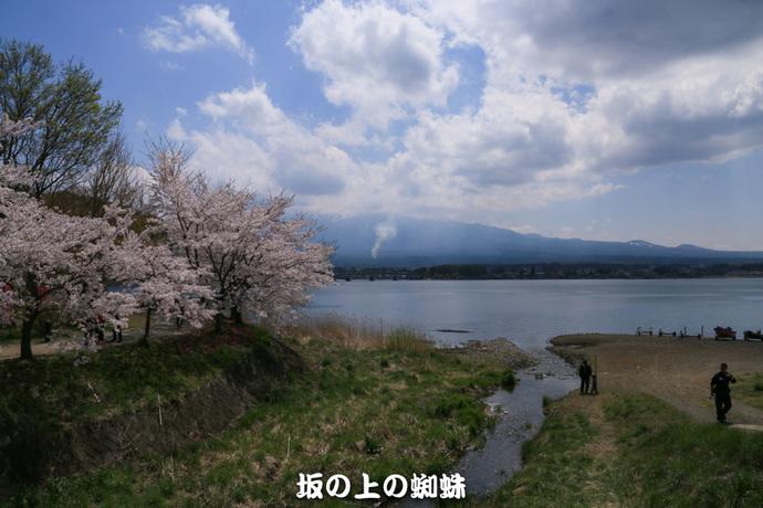 04-IMG_0423-2LR-1.jpg