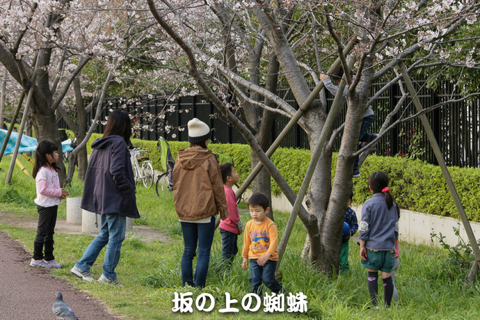 04-IMG_7240-2-LR.jpg