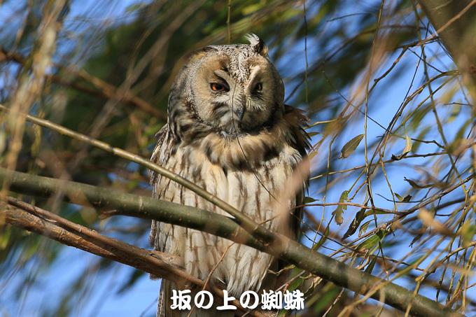 05-TACK4846-LR-2.jpg