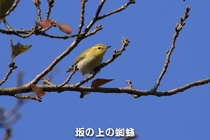 05-TACK5960-2-Edit-LR1.jpg