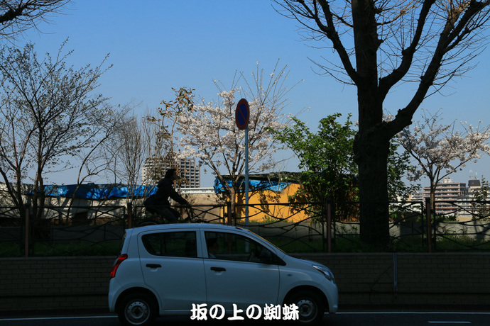 06-IMG_9592-2LR-1.jpg