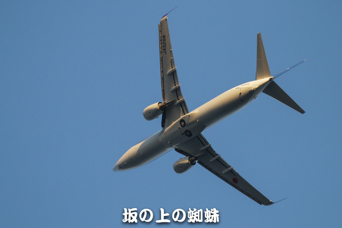 07-IMG_8480-2-LR1.jpg