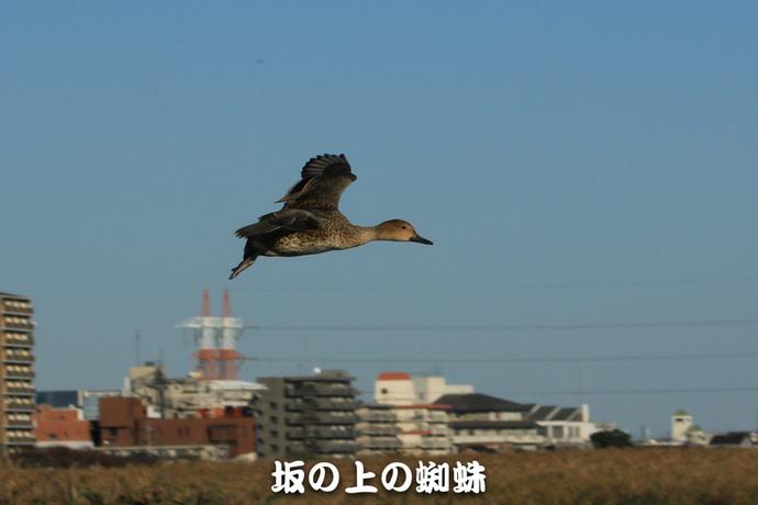 07-TACK0893-LR-2.jpg
