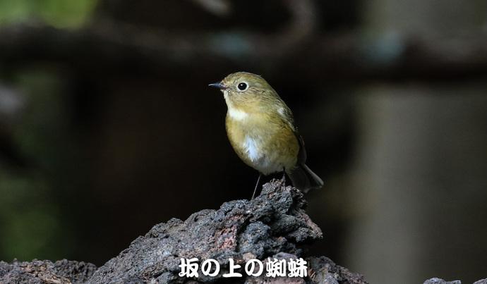 07-TACK4698-LR-2.jpg