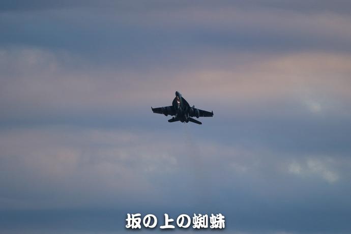 08-E1DX8142-LR1.jpg