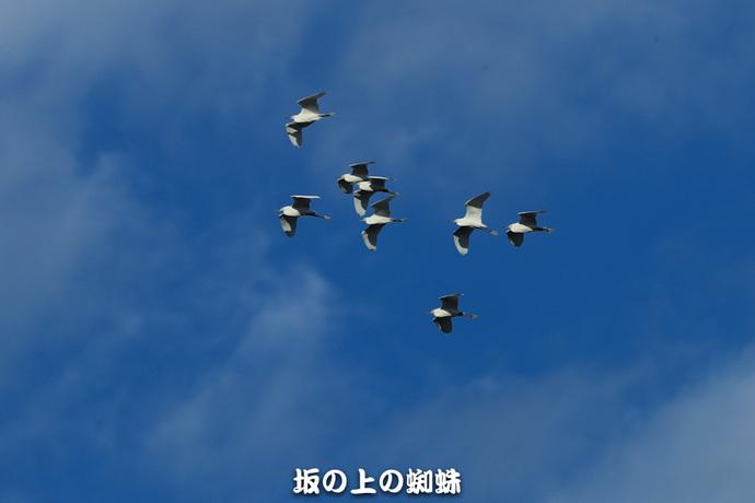 08-TACK3524.jpg