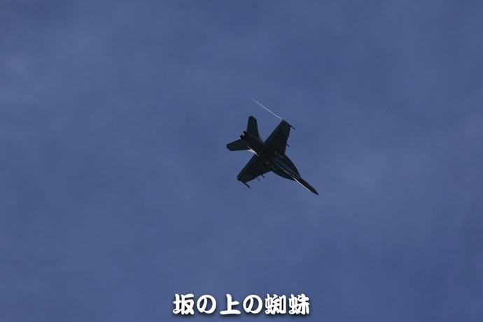 09-TACK0797-2-LR.jpg