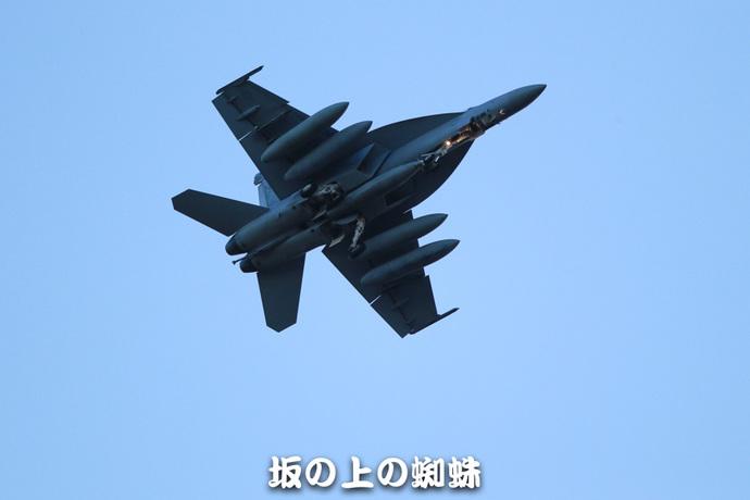 10-E1DX8175-LR1.jpg