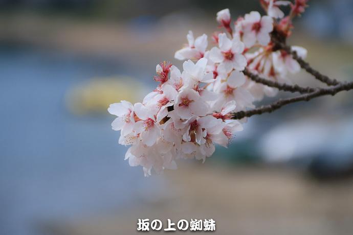 10-IMG_0454-2LR-1.jpg
