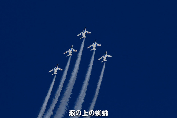 10-TACK0331-2LR-1.jpg