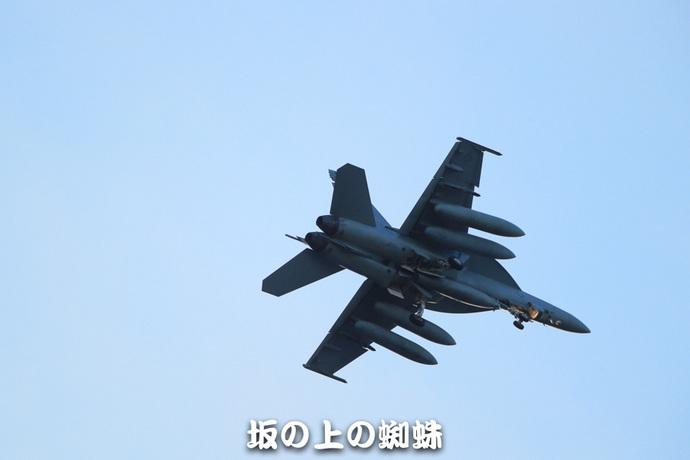 11-E1DX8180-LR1.jpg
