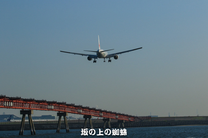 11-EO7D9851-2LR-1.jpg