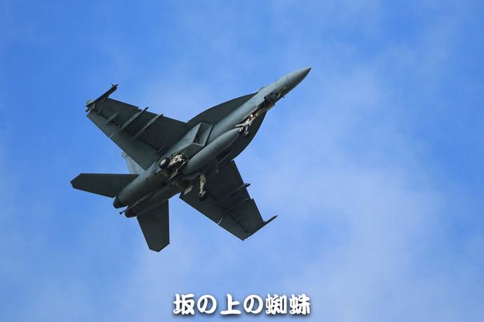 15-E1DX3064-LR.jpg