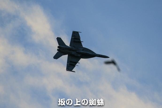 15-TACK6773-LR1.jpg
