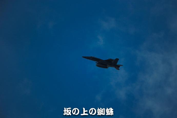 16-E1DX3074-LR-2.jpg