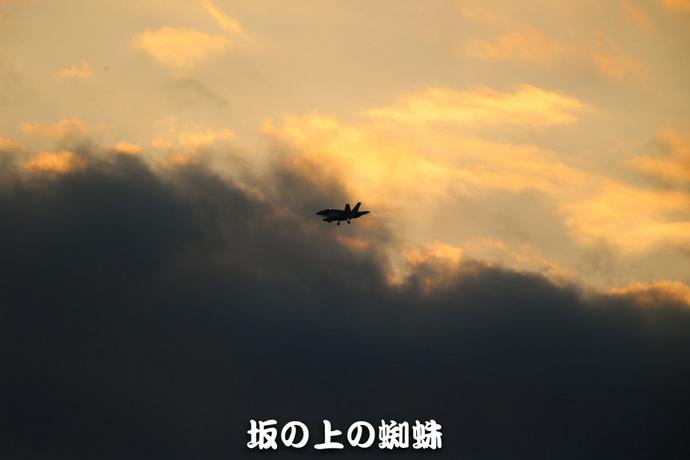 02-E1DX8239-LR1.jpg