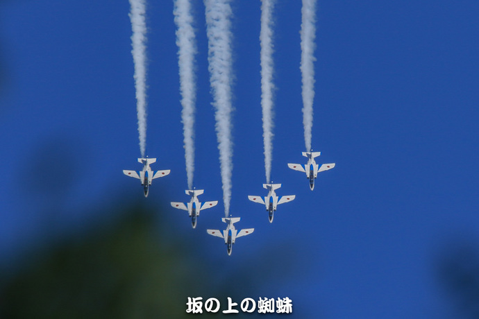 02-TACK0173-2LR-1.jpg