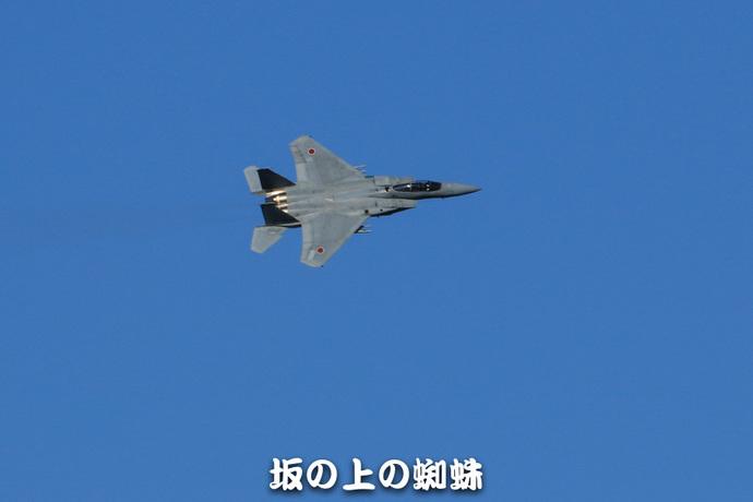 03-TACK1485-LR.jpg