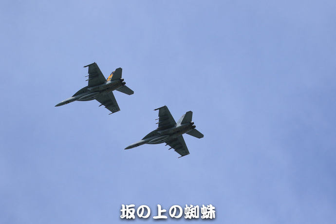 03-TACK9552-2-LR.jpg