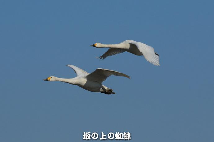 04-EO7D0767-2LR-1.jpg