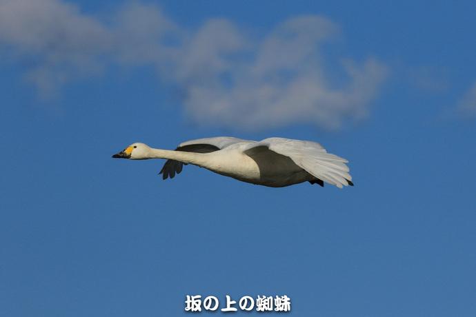 04-EO7D1289-2LR-1.jpg