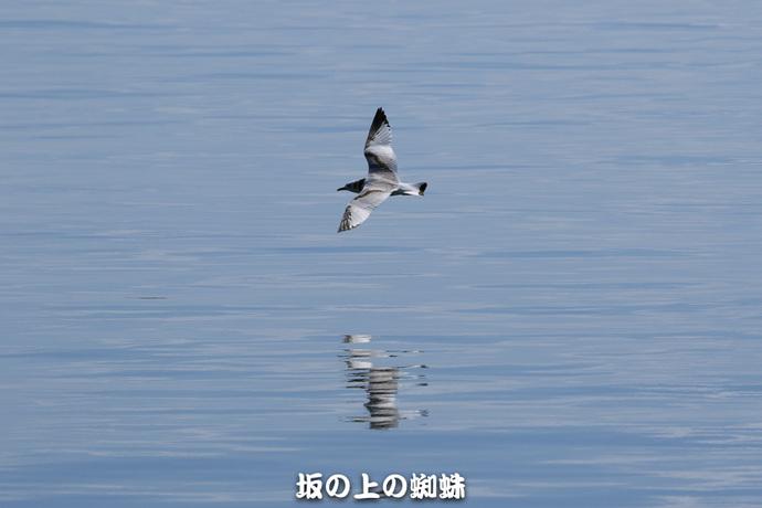 04-EO7D1510-2LR-1.jpg