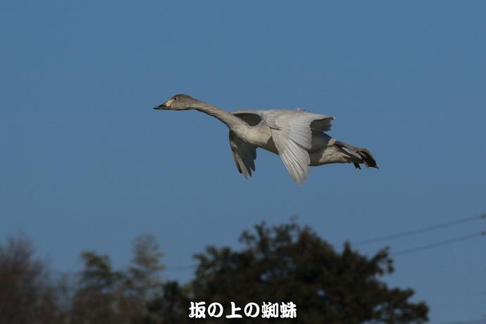 05-EO7D0823-2LR-1.jpg