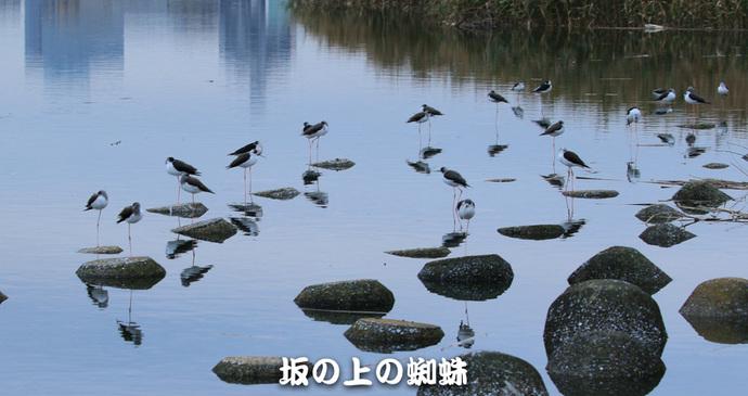 05-TACK0406-LR.jpg