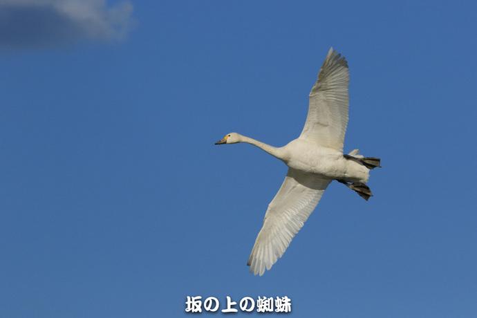06-EO7D1255-2LR-1.jpg