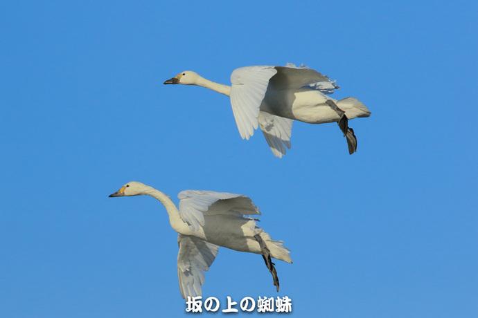07-EO7D1841-2LR-2.jpg