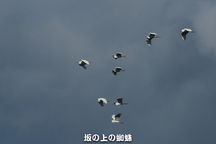 07-TACK3514.jpg