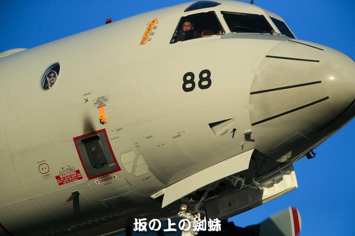 08-E1DX0365-LR.jpg