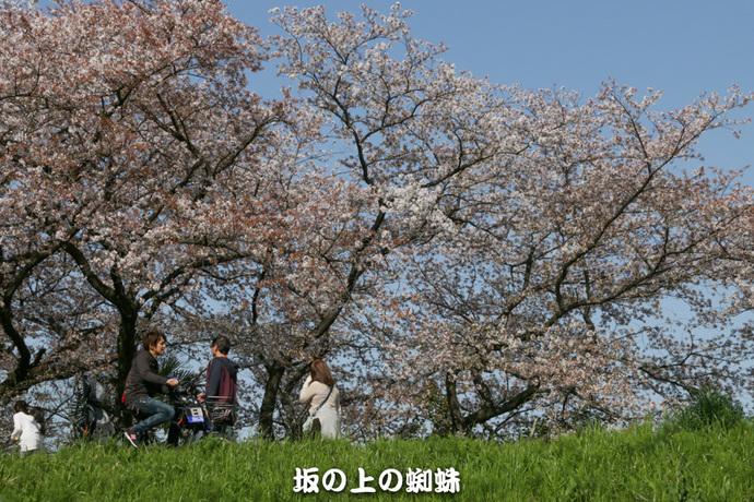 09-IMG_0157-2LR-1.jpg