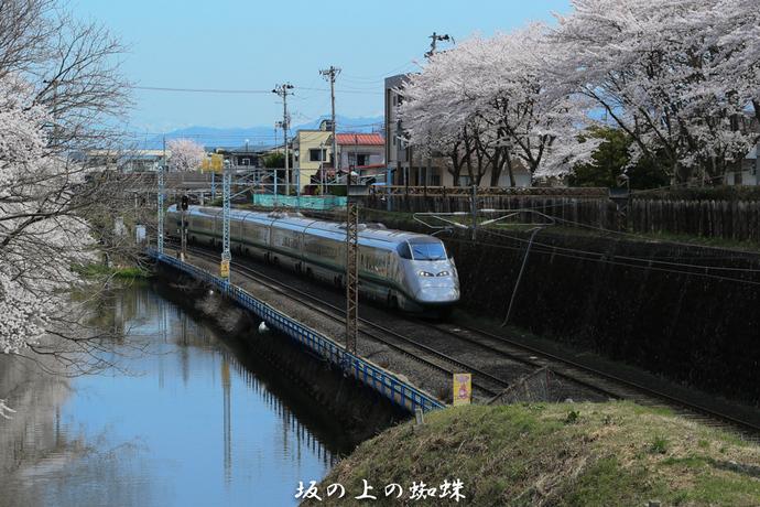 11-B75R7925-LR.jpg