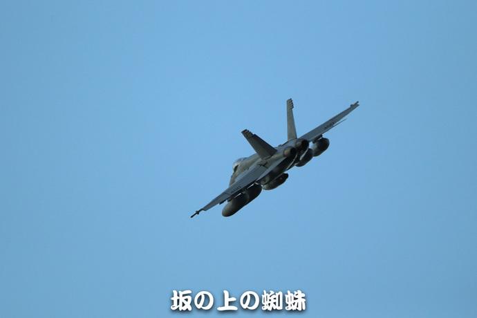 12-E1DX7984-LR1.jpg