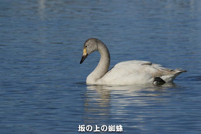 12-EO7D1149-2LR-1.jpg