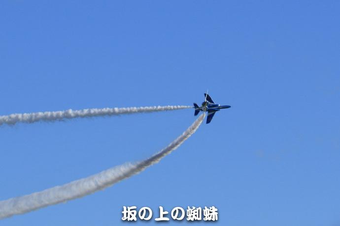 16-TACK1261-LR.jpg