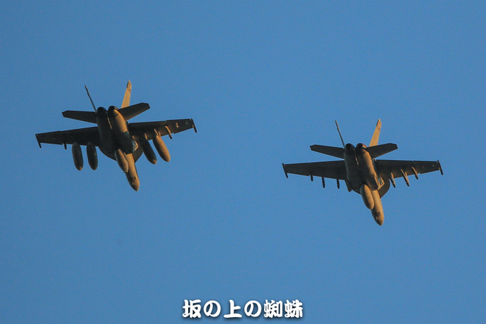 17-E1DX1106-LR.jpg