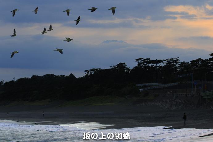 2-EO7D4138-夕暮れB.jpg