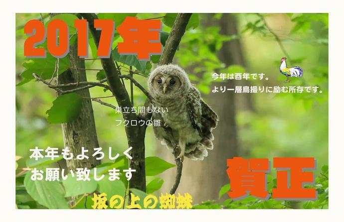2017年賀ブログ用.jpg