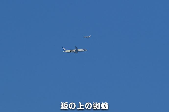 37-E1DX9098-LR.jpg