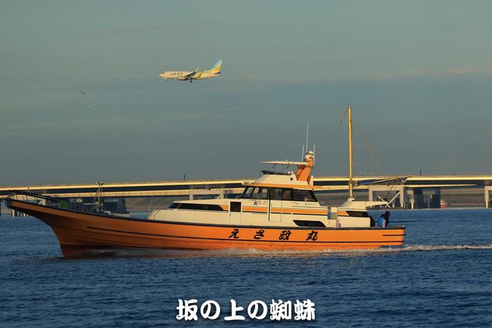 TACK2210-LR.jpg